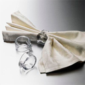 Napkin and Napkin Rings