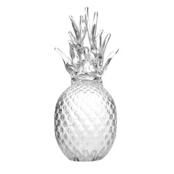 Pineapple - L photo